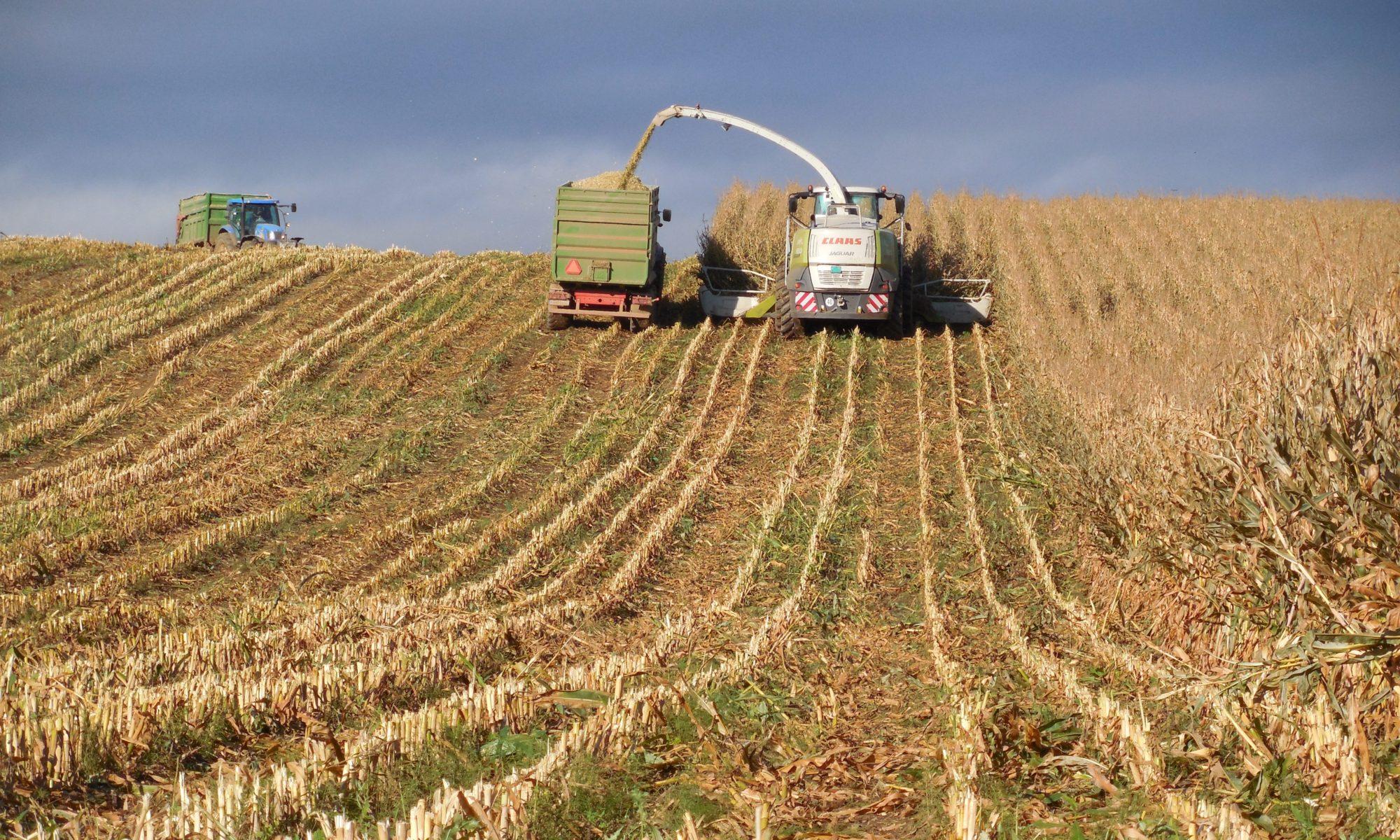 Poľnohospodárske družstvo podielnikov kežmarok
